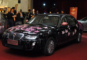 Roewe car painted by Anna Glynn